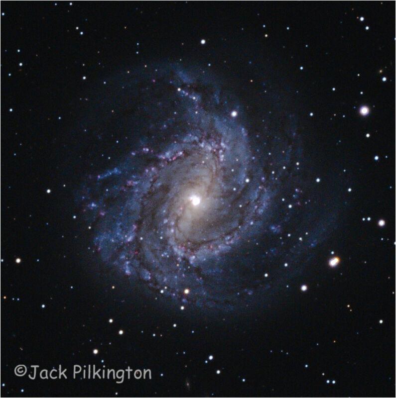 Southern Pinwheel Galaxy-©Jack Pilkington