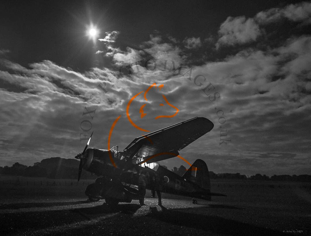 Moonlight Pick Up. DSC0609