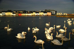 Claddagh, Galway Ireland