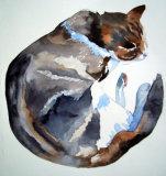 Circle Cat 1