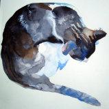 Circle Cat 2