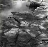 River Detail, Upper Swaledale