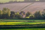 Evening sunlight in the Adur Valley, West Sussex