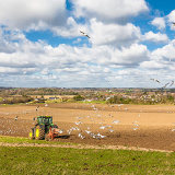 Ploughing in Spring above Upper Beeding, West Sussex