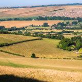 Adur Valley towards Cissbury in Summer
