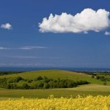 Towards the sea from Kithurst Hill, West Sussex 3