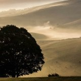 Dawn from Steyning Bowl, South Downs, West Sussex 11