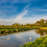 Evening in Spring on the River Adur at Upper Beeding, West Sussex