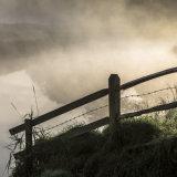 Morning mist rising on the River Adur at Upper Beeding