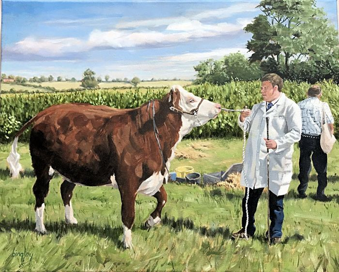 Prize Heifer