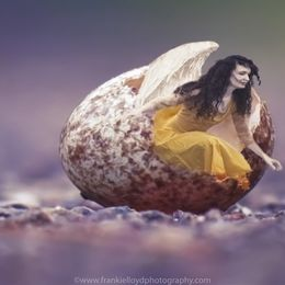 Aoife-emerging-from-egg-12x8