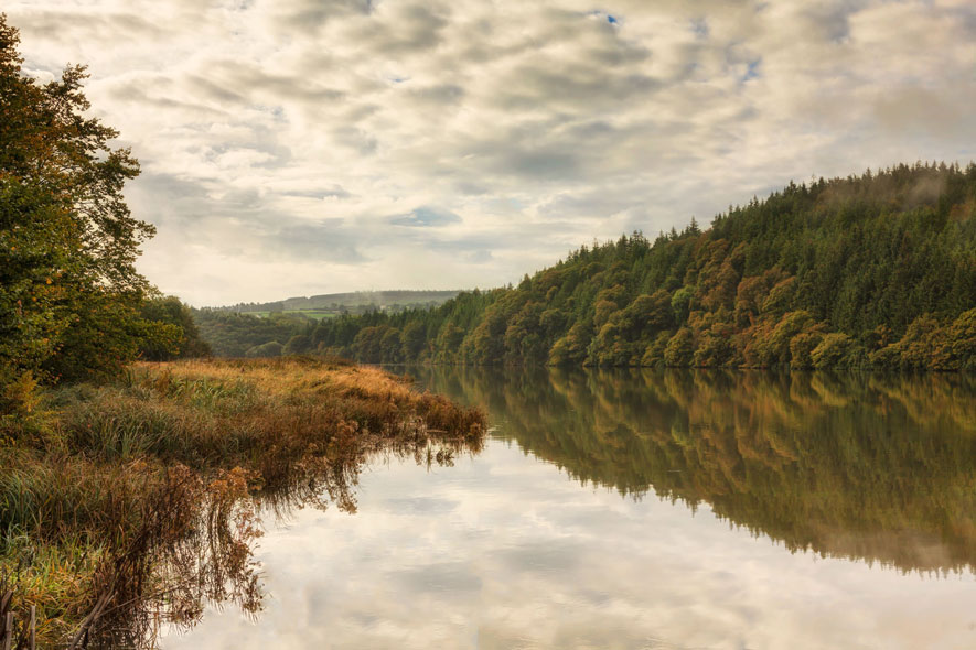 Blackwater-preparing-for-Autumn