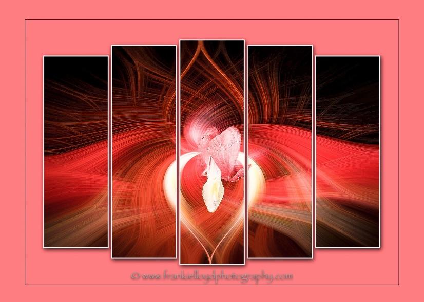 Bleeding-Hearts-triptych