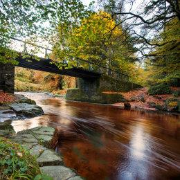 Colligan-Bridge-Autumn