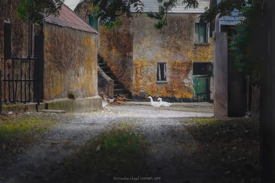 Farmhouse Old Parish