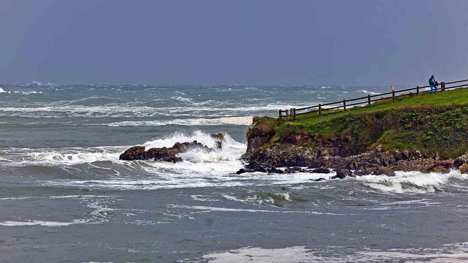 Helvic-Cove-rough