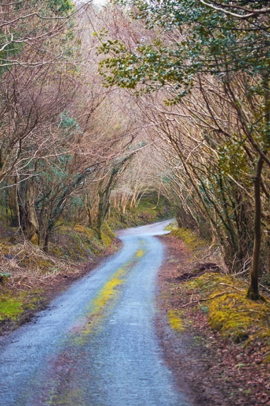 Kilmanahan-Road