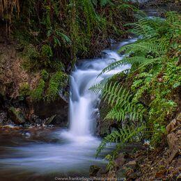 Knockanore-stream