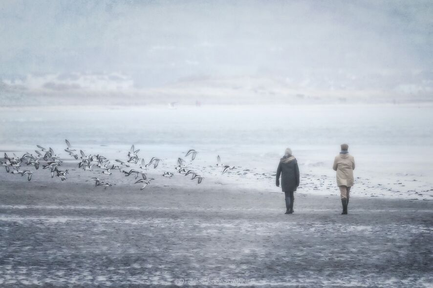 Ladies-walking-the-Cunniger