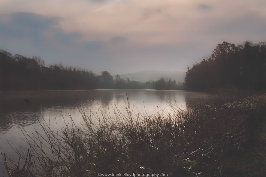 Marlfield-Lake-early-morning-fog