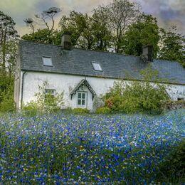 Melleray-Cottage