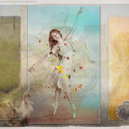 Miz-Butterfly-Ballarina