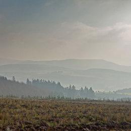 Mountain-in-Fog