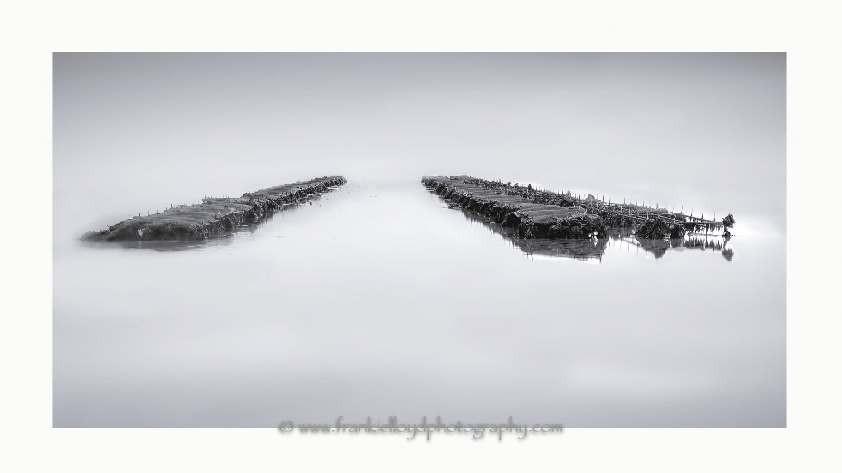 Oyster-Beds-by-2