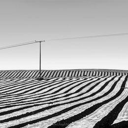 Plastic-Lines-field-Cappoquin-33x15