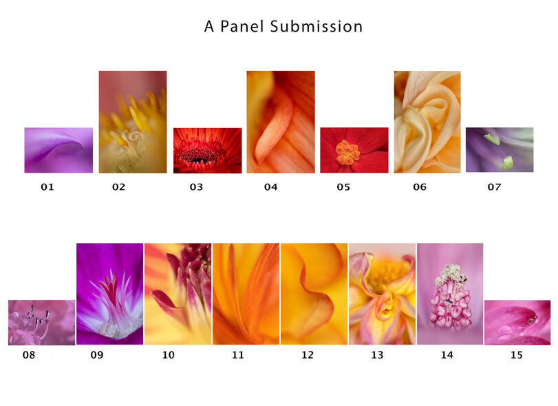 """Successful """"A"""" Panel Submission for Associateship Distinction from The Irish Photographic Federation"""