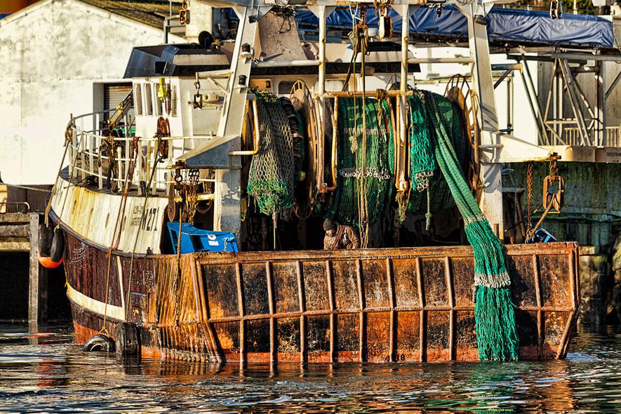 Trawler-W271