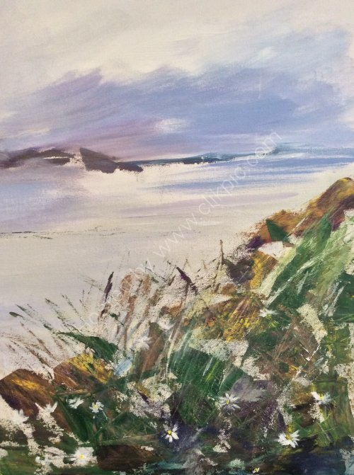 Beach walk:Harris