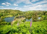 Summer Time Tarn Hows