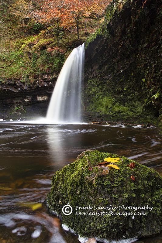 Autumn Scwd Gwladys
