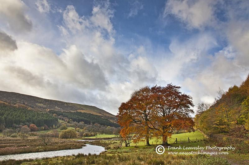 Brecons Autumn Colours