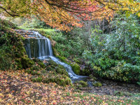 Dorset Autumn Falls