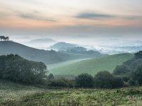 Dawn Colmers Hill
