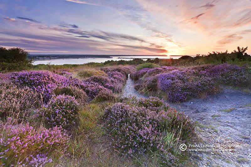 Summer Sunrise Hengistbury Head