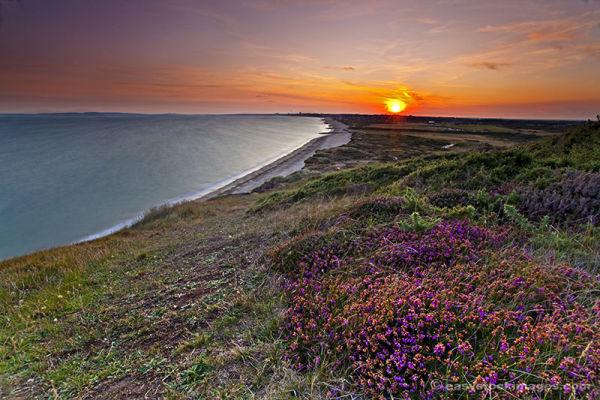 Sunset on the Heather
