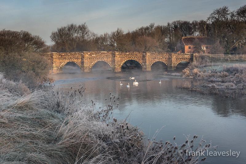 Winter Whitemill