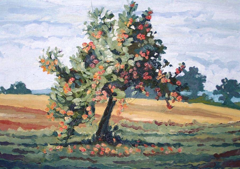 the last apple tree