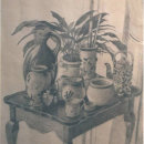 Still Life in Pencil