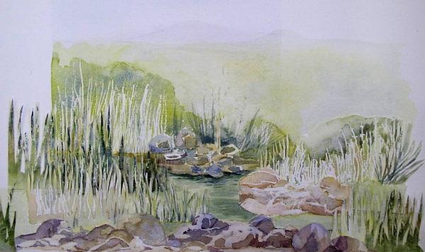 Water Garden Landscape