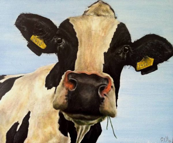 Cow with Ear Labels