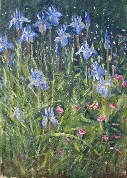 Ann Folkard among the Irises