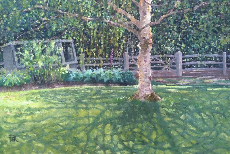 Birch Tree Shadows