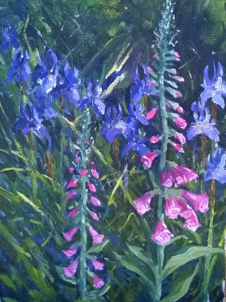 Foxgloves & Irises