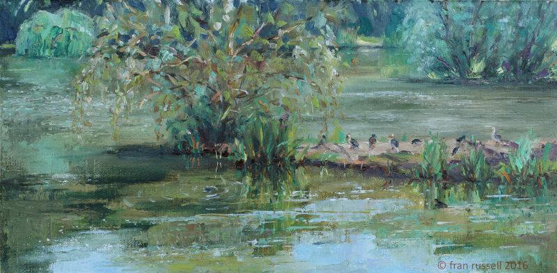 June afternoon - Nick's Lake
