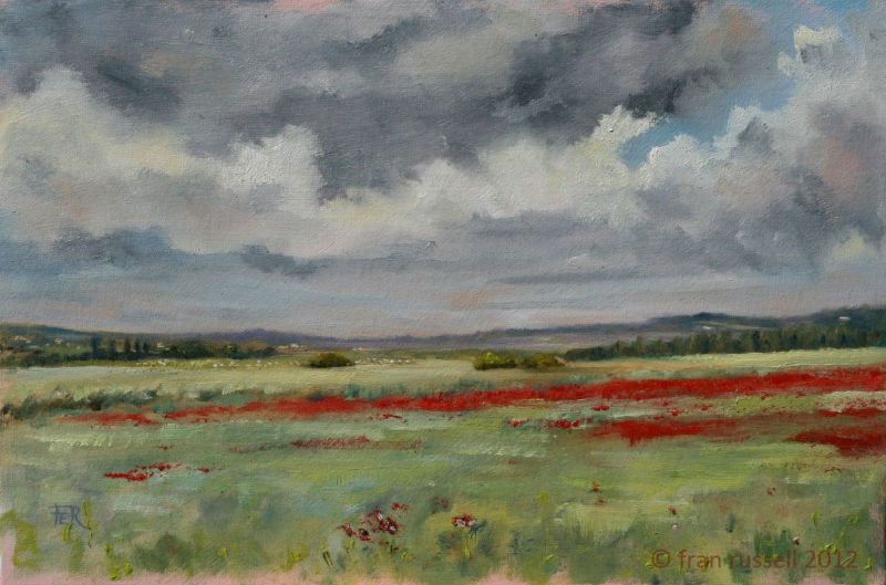 Poppies, Romney Marsh