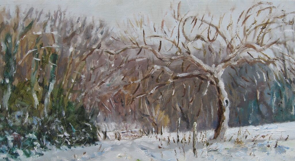 Snow in the orchard, Benenden